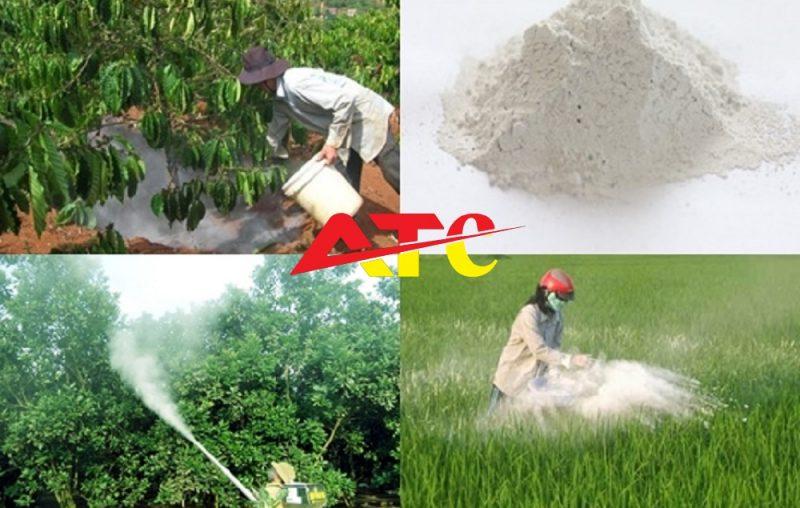 tác dụng của vôi bột trong chăm sóc cây trồng